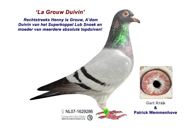 La Grouw Duivin - Duivin Superkoppel