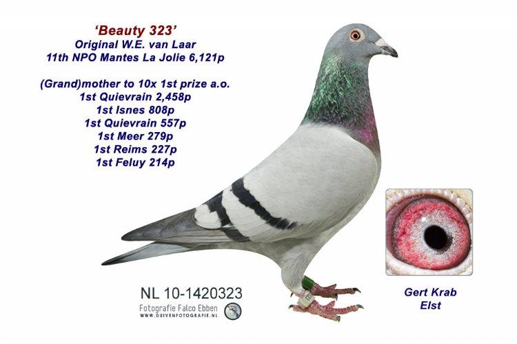 Beauty 323 - Wulf van Laar