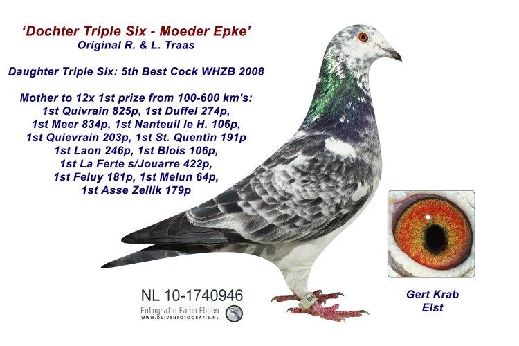 Moeder Epke - Dtr 666 R & L Traas