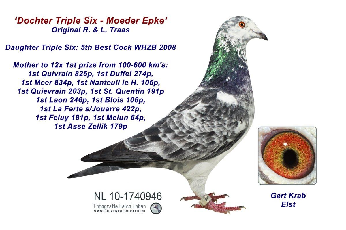 NL10-1740946 Moeder Epke