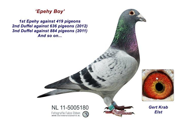 11-5005180 Epehy Boy