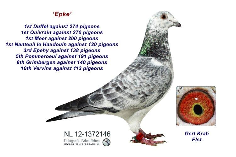 NL12-1372146 Epke