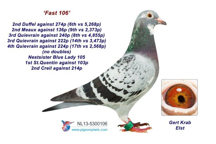 13-5300106 Fast 106