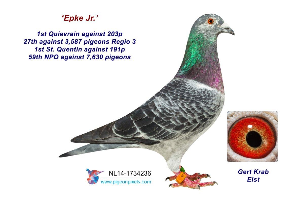 14-1734236 Epke Jr.